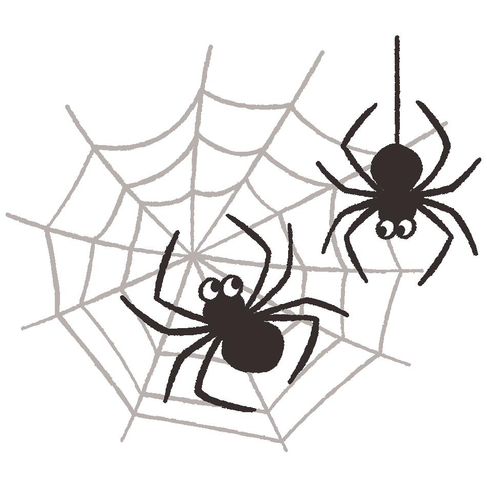クモの手書き風イラスト