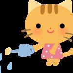 【動物】水やりをするかわいいネコのイラスト
