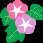 アサガオ(朝顔)の植物イラスト