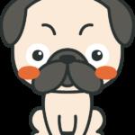 犬のイラスト(パグ)