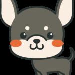 犬のイラスト(ミニチュア・ピンシャー)