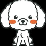 犬のイラスト(トイプードル)