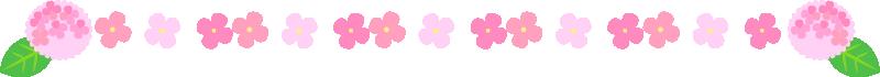 アジサイの罫線ライン・囲み素材(ピンク)