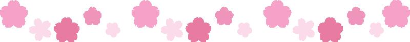桜(サクラ)の罫線ライン・囲み線のイラスト