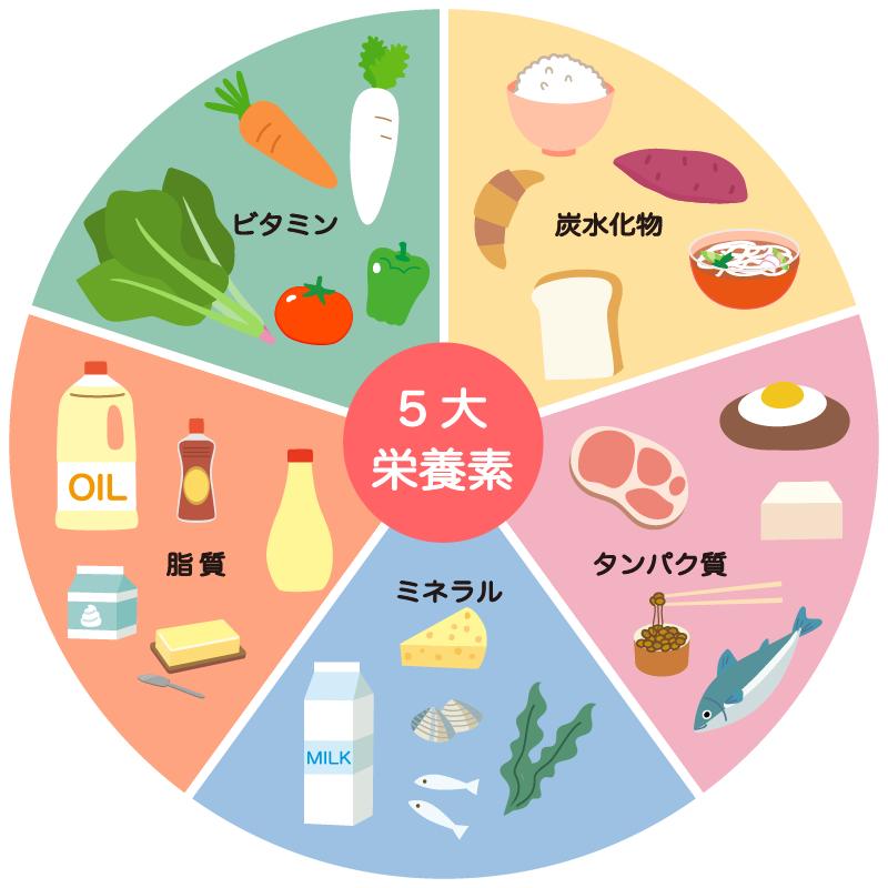 5大栄養素 イラスト