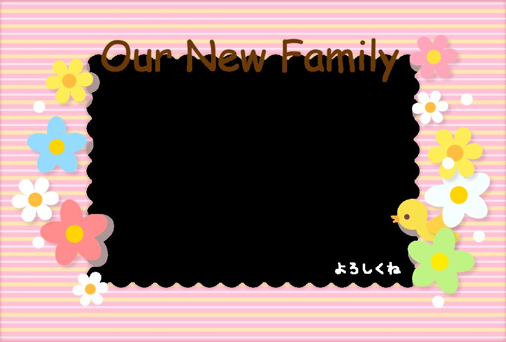出産報告ハガキの無料デザインテンプレート(お花・ストライプ)