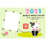 年賀状 2021 無料デザインテンプレート(丑と凧揚げ)
